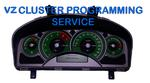 Holden Commodore VZ Cluster Programming